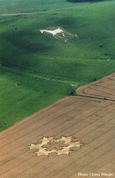 Crop circles | crop-circles-1997-08-08-Milk-Hill-Wiltshire