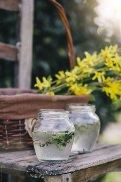 Spring Blooms, Get Outside, Lemonade, Mason Jars, Mugs, Tableware, Flowers, Dinnerware, Tumblers