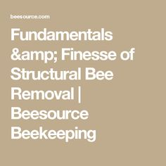 Fundamentals & Finesse of Structural Bee Removal | Beesource Beekeeping