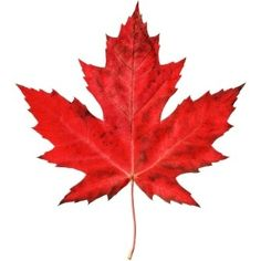 Canada Immigration News And Residency Tips