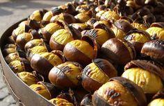 castane-comestibile
