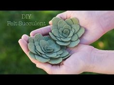 Felt Succulents Project | DIY Home Decor Crafts | Apostrophe S | Aloe and Friends—Radiants - YouTube