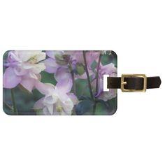 Pink Purple Columbine flowers