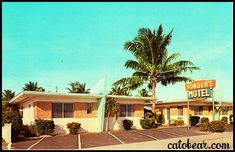 Today's lovely vintage postcard features the Yonders Motel - Hollywood Florida. Although the business is closed, the building currently stands. Vintage Florida, Old Florida, Florida Hotels, Vintage Hotels, Vintage Travel, Miami Bar, Century Hotel, Mid Century, Hollywood Florida