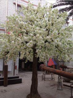 arboles del mundo.con..flores - Buscar con Google