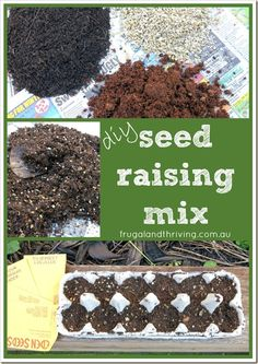 Commercial seed raising mixes are convenient, but they're often either expensive or poor quality. Save money and get better results by making your own DIY seed raising mix.