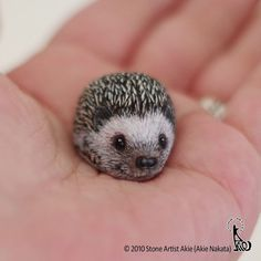 Akie Nakata, aka Stone Artist, is a Japanese artist who turns stones into tiny animals that fit in your palm. She does that by painting them and has been doing Stone Art Painting, Pebble Painting, Pebble Art, Painted Rock Animals, Hand Painted Rocks, Painted Pebbles, Rock Painting Patterns, Rock Painting Designs, Stone Crafts