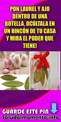 Pon Laurel y Soft Sugar Cookies, Sugar Cookies Recipe, Laura Lee, Home Remedies, Natural Remedies, Clara Berry, Christmas Sugar Cookie Recipe, White Magic, Cleanser