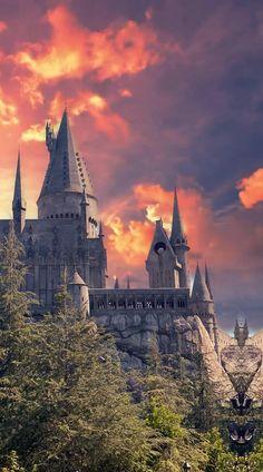 Harry Potter Tumblr, Estilo Harry Potter, Mundo Harry Potter, Harry Potter Feels, Harry Potter Pictures, Harry Potter Fan Art, Harry Potter Movies, Harry Potter Fandom, Harry Potter Videos