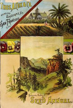 Vintage Garden Images On Pinterest Seed Catalogs