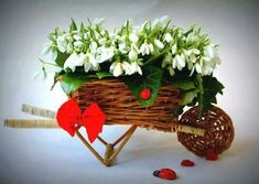 Baba Marta, Corporate Flowers, Daffodils, Baby Pictures, Winter Wonderland, Peppermint, Basket, Spring, 8 Martie