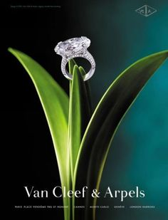 he Most Beautiful Jewelries in the World - Van Cleef & Arpels Diamond Ring Jewellery Advertising, Jewelry Ads, High Jewelry, Photo Jewelry, Luxury Jewelry, Jewelry Design, Jewelry Branding, Van Cleef Arpels, Van Cleef And Arpels Jewelry