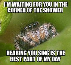 Misunderstood Spider | hearing you sing is the best part of my day