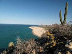 We love Cabo Pulmo in Baja Calfornia Sur!