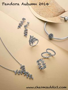 49d4c22f6 Discover Autumn's radiance with PANDORA's new 2014 Autumn Collection. The  intricate and textured motifs this season are inspired by nature.