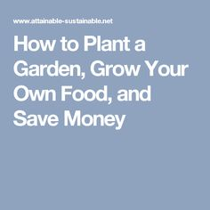 How to Plant a Garden, Grow Your Own Food, and Save Money