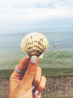 let's wander the beaches and find beautiful little presents that have drifted into shore with hopes of being seen.  truly seen.