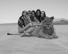 - Artist, Creative Director, Menswear Stylist — mxdvs: Big Cats Photographed by Sylvie Blum Nude Photography, Black And White Photography, Fashion Photography Inspiration, Beauty Shots, Big Cats, Pet Birds, Lions, Funny Pictures, Models
