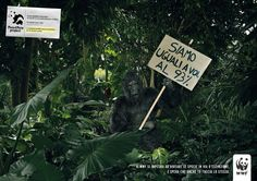 Read more: https://www.luerzersarchive.com/en/magazine/print-detail/wwf-53808.html WWF The concept for this campaign was created by 80 children at an elemetary school in Italy. Tags: WWF,Leo Burnett, Milan,Francesco Bozza,Winkler+Noah,Andrea Marzagalli