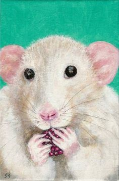 If you give a rat a raspberry...