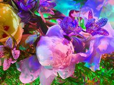 Torkil Gudnason – Electric Blossom