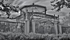 Adelaide Botanic Gardens #8    The Palm House is an exquisite, painstakingly restored Victorian glasshouse imported from Bremen, Germany in 1875. It is thought to be the only one of its kind still in existence.    The Palm House was designed by German architect Gustav Runge and the sophisticated engineering techniques used in its construction make it a benchmark in glasshouse design. The hanging glass walls are similar to those used in today's city bu