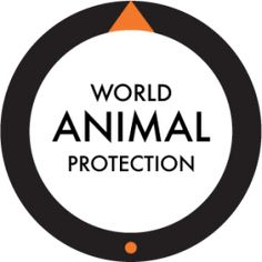 World Animal Protection | Animal Protection Index Country Rankings