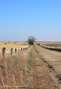 Limestone fence on a country road IMG_2228c8x11R | by CP Images