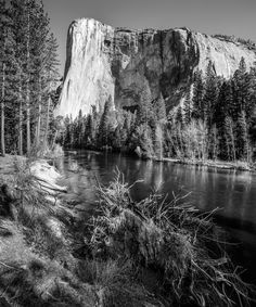 El Capitan and Merced river in Yosemite Valley - El Capitan and Merced river in Yosemite Valley Here I have used a 24mm Tilt / Shift lens and taken two exposures. One with the lens shifted to get El Capitan in the frame and the second exposure, I shifted to get the tree that was under me in the frame. These I then put together as a panorama in Photoshop.