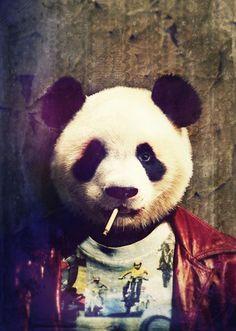 Panda Durden Canvas Print by rubbishmonkey Le Dab, Arte Dope, Panda Wallpapers, Panda Love, Panda Panda, Tier Fotos, Pet Portraits, Animals And Pets, Pop Art