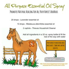 """All natural """"all-purpose"""" spray for your horse."""