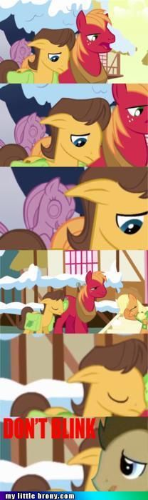 My Little Brony: Friendship is Magic, Pony - Dr. Whoof - Don't Blink!