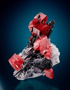 Here\'s an American classic: Rhodochrosite, hübnerite and quartz, 9.1 cm tall // Rob\'s Pocket, Mini King raise, Sweet Home Mine, Alma, Park County, Colorado // John Lucking collection, Jeff Scovil photo // This specimen was pictured on page 258 of \