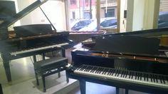Pianoforti a Coda www.allformusic.it
