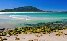 Best Spots for Beach Camping in NSW | Pitch your tent, then into the surf with you.