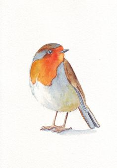 Robin Painting Bird ART print of animal watercolor by Splodgepodge