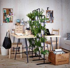 Mehr Grün für dein Zuhause! Bring deine Wände zum Blühen! Erfahre jetzt mehr bei IKEA!