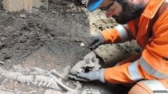 Bedlam burials: Thousands of skeletons to be unearthed: The excavation is part of the Crossrail project which has identified thousands of victims buried at the Bedlam burial ground under Liverpool Street, London.