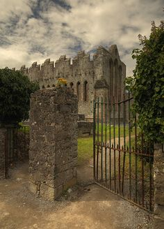 Kerry - Muckross Abbey is one of the major ecclesiastical sites found in the Killarney National Park, County Kerry, Ireland. It was founded in 1448 as a Franciscan friary for the Observantine Franciscans by Donal McCarthy Mor. Oh The Places You'll Go, Places To Travel, Places To Visit, Photo Chateau, Jolie Photo, Ireland Travel, Cork Ireland, Ireland Vacation, Dream Vacations