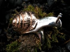 Hey, I found this really awesome Etsy listing at http://www.etsy.com/listing/35941328/snail-ring