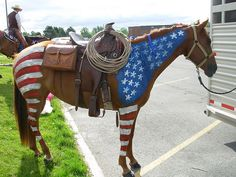Flag Horse Daisy the horse decorated for the 4th of July Parade in Rexburg, Idaho, 2010