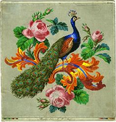 Peacock ~ lovely needlepoint pattern...or counted cross-stitch!