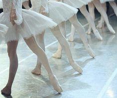 White Swan, Black Swan, Lizzie Hearts, Angel Aesthetic, Swan Song, Hogwarts Houses, Swan Lake, Dance Photography, Look At You