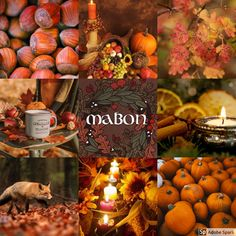 I've been working on my Graphic Designer FMP (Final Major Project) for a while now. It surrounds on the 8 Sabbats from the Pagan Wheel of the Year, that I've been studying for the last Wicca, Magick, Witchcraft, Mabon, Samhain, Vintage Witch Photos, Autumn Witch, Pagan Witch, Witches
