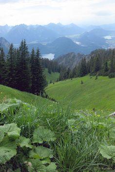 Blick vom #Tegelberg, #Allgäu #Bayern