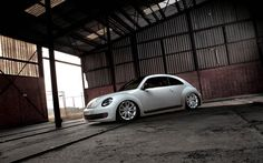 Volkswagen Beetle Wallpaper Free Download. Resolution 2560x1600 px - GreatCarWallpaper ID 2670