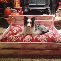 Wooden Dog Crate with Dog Bed Insert by braveandfearlessco on Etsy https://www.etsy.com/listing/205220071/wooden-dog-crate-with-dog-bed-insert