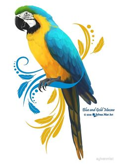 Blue and gold Macaw Parrot Artwork Design. Bird Drawings, Colorful Drawings, Animal Drawings, Bird Painting Acrylic, Parrot Painting, Owl Art, Bird Art, Blue Gold Macaw, Parrot Drawing