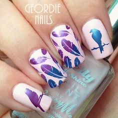 Geordie Nails: Born Pretty Stamping Plate BP75 ~ Birds & Feathers