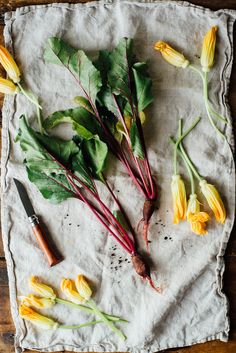 Baked Squash Blossoms Stuffed with Beet Hummus, a great way to enjoy summer's bounty | dolly and oatmeal